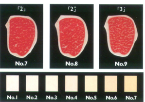 Wagyu Fat Colour
